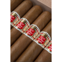 Hoyo de Monterrey Primaveras S.E. 2020 - Year of the Ox -