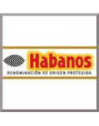 Cubans / Habanos